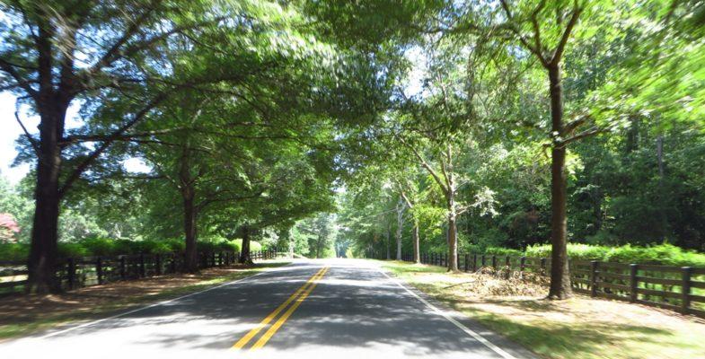 Around North Valley In Milton Georgia (3)