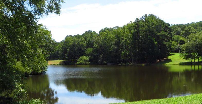 North Valley Drummond Pond Milton GA